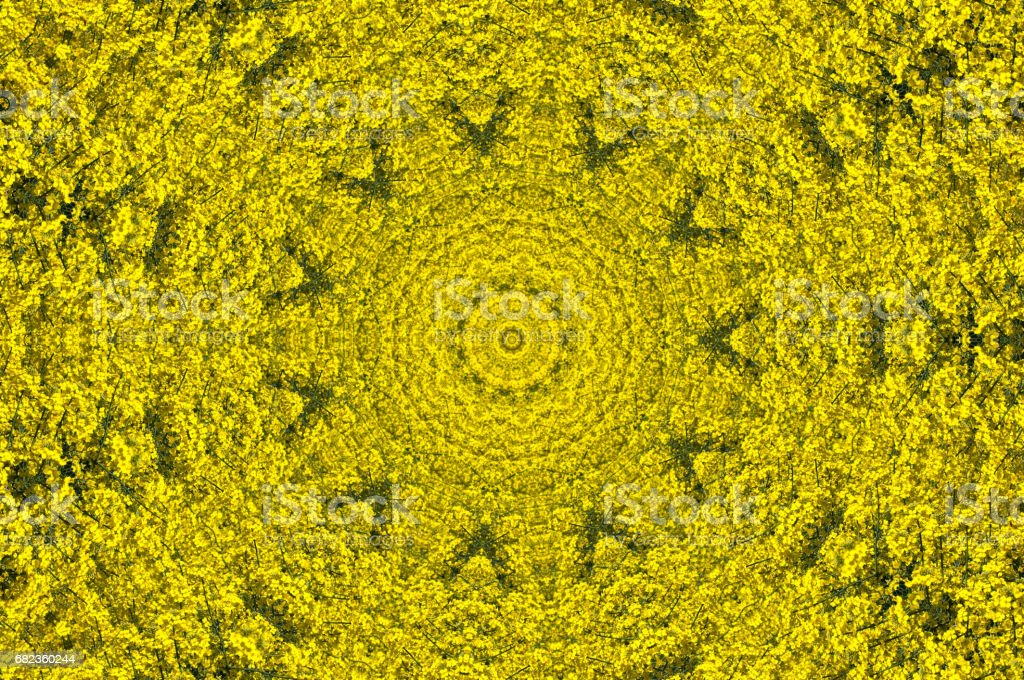 Yellow ornamental pattern foto stock royalty-free