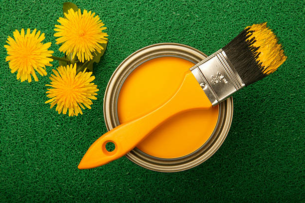 yellow paint and dandelions on green turf - kelly green stock pictures, royalty-free photos & images
