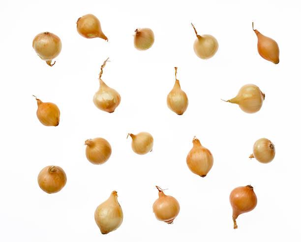gelbe perlzwiebeln - perlzwiebeln stock-fotos und bilder