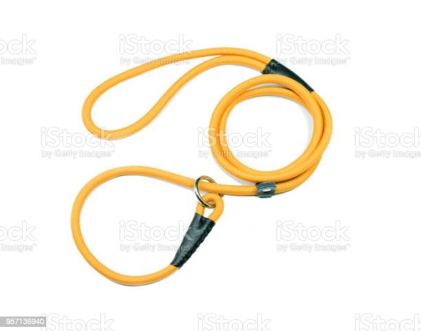 Yellow pet leash on isolated white background picture id957136940?b=1&k=6&m=957136940&s=612x612&h=8y0so38xoypxnczmlnl7sgvywwck2h  teuhnrb9chg=