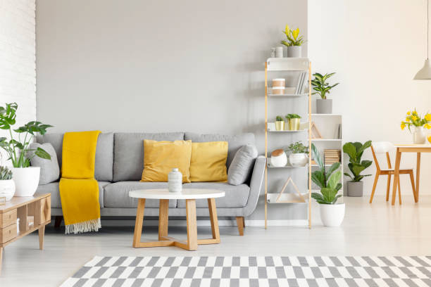 Yellow pillows and blanket on grey sofa in modern living room interior with plants and carpet. Real photo stock photo