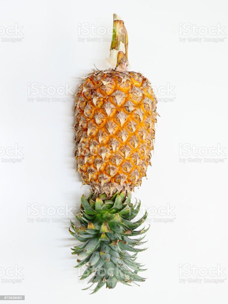 Beyaz Sarı ananas royalty-free stock photo