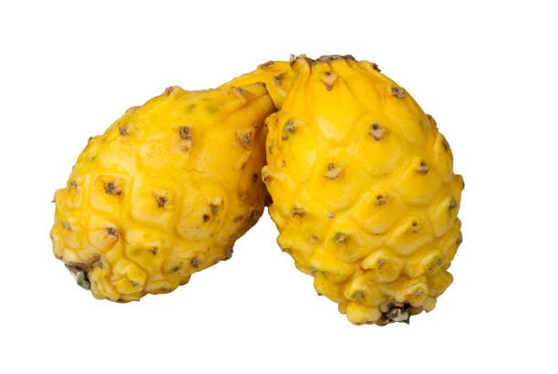 gelbe pitaya oder bio drachenfrucht aus tropischen regionen von guatemala. - kaktusfrucht stock-fotos und bilder