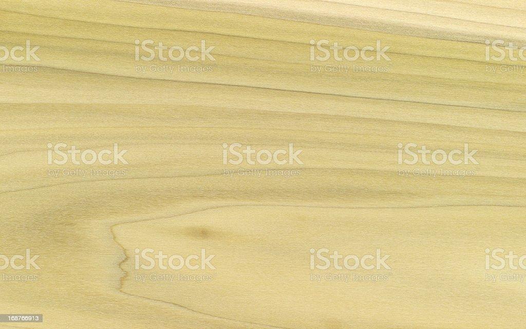 Yellow Poplar Wood Grain XXXL royalty-free stock photo