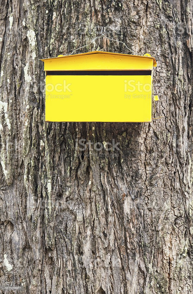 Yellow post box. mailbox on skin tree background. royalty-free stock photo
