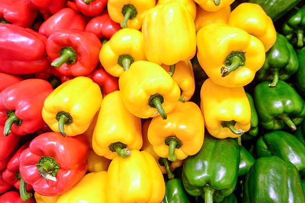 Yellow, red and green bell pepper Yellow, red and green bell pepper, paprika is a local plant in Mexico. Later, chili seeds were brought to Spain in 1493, and publish them to European countries. Africa and Asia. yellow bell pepper stock pictures, royalty-free photos & images
