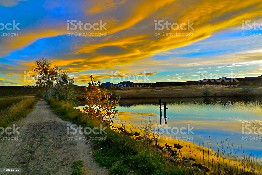 Yellow Reflection in Pond royalty-free stock photo