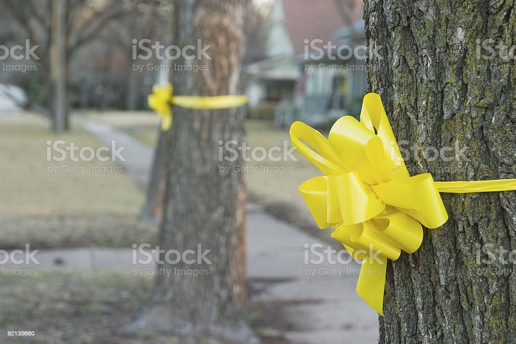 Yellow Ribbon Around An Old Oak Tree 1 royalty-free stock photo