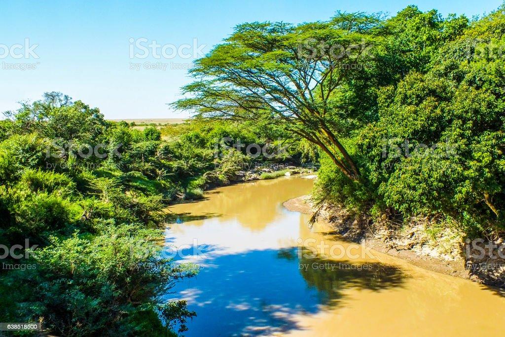 Yellow river in Kenya stock photo