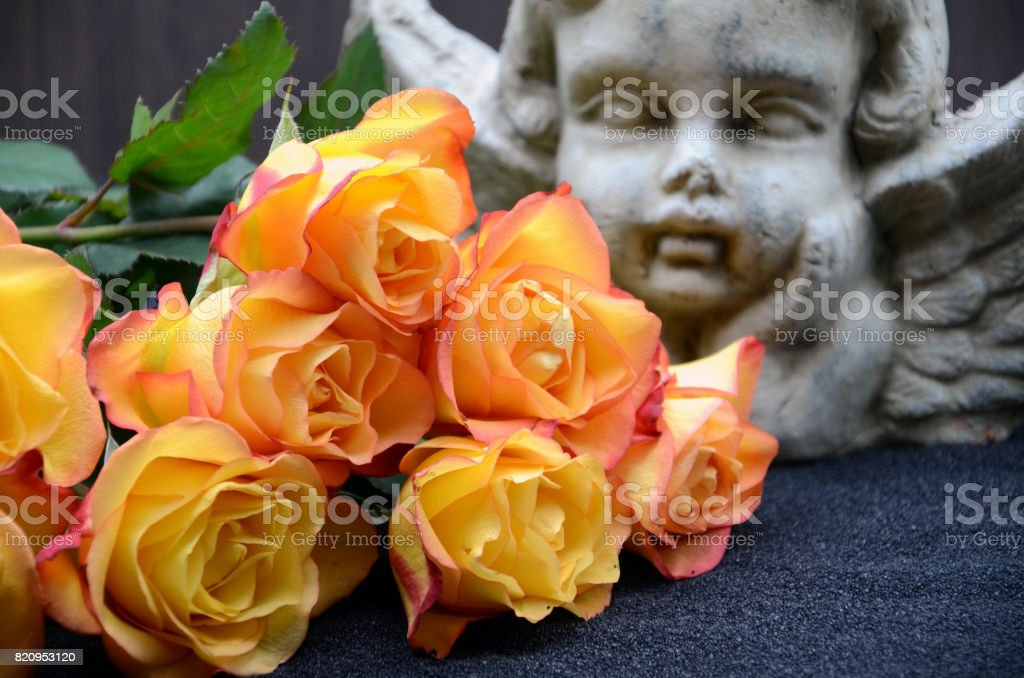 yellow rose and angel stock photo