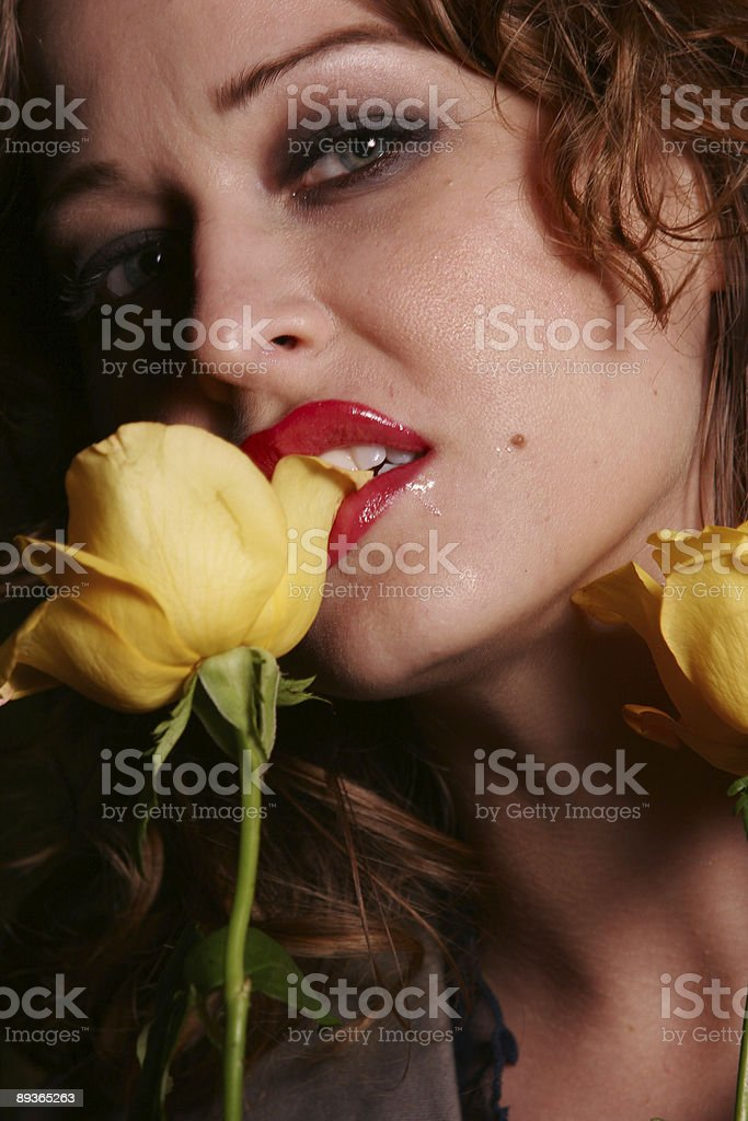 Yellow rose destruction royaltyfri bildbanksbilder