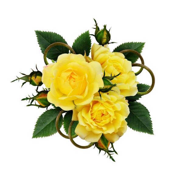 Yellow rose flowers arrangement picture id673066382?b=1&k=6&m=673066382&s=612x612&w=0&h=zgj8bboazi8ke cxen w6p6ll6  xpk84 nbjsnejai=
