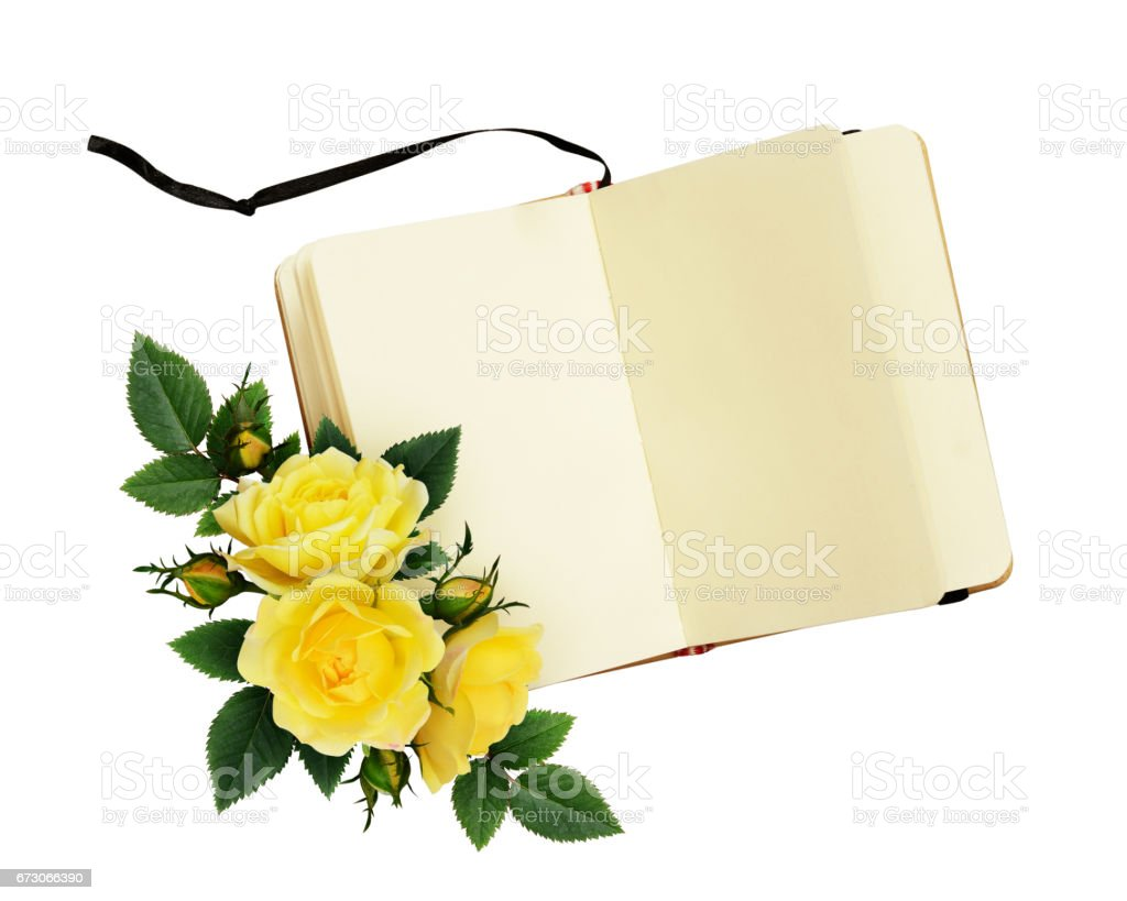 Yellow Rose Flowers Composition And Open Notebook Stock Photo More