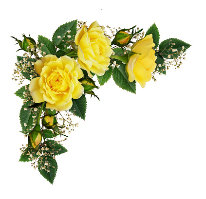 Yellow rose flowers in a corner arrangement