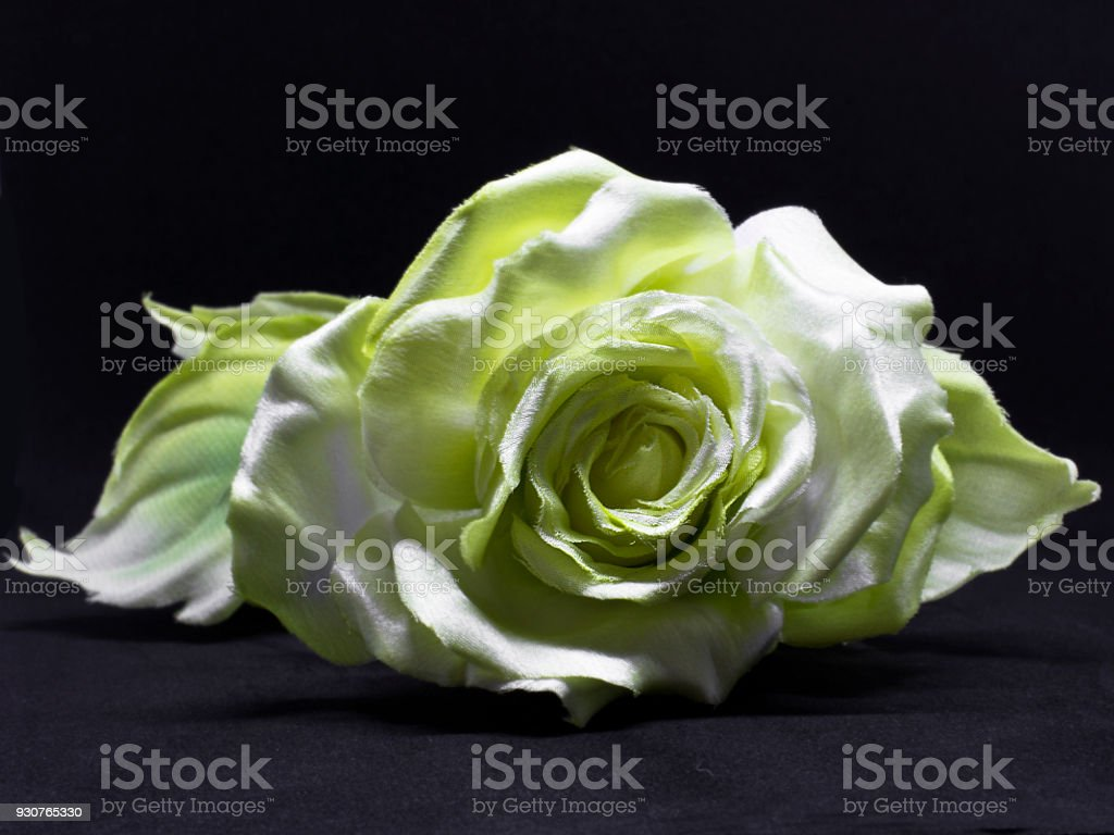 Yellow rose isolated on the black background. Artificial silk flowers