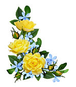 istock Yellow roses and blue small flowers in a corner arrangement 1133767482