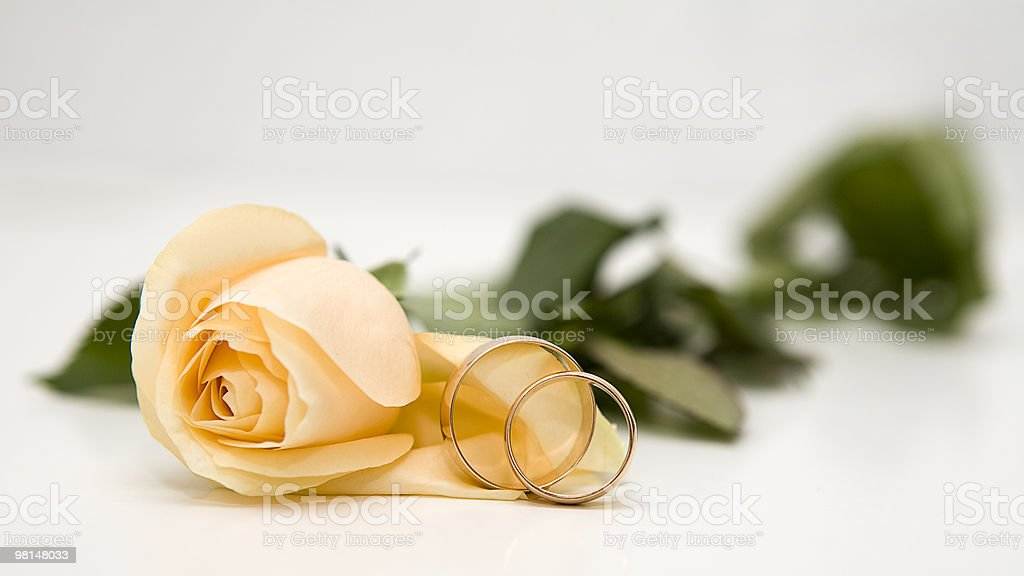 Yellow roses and weddings rings stock photo