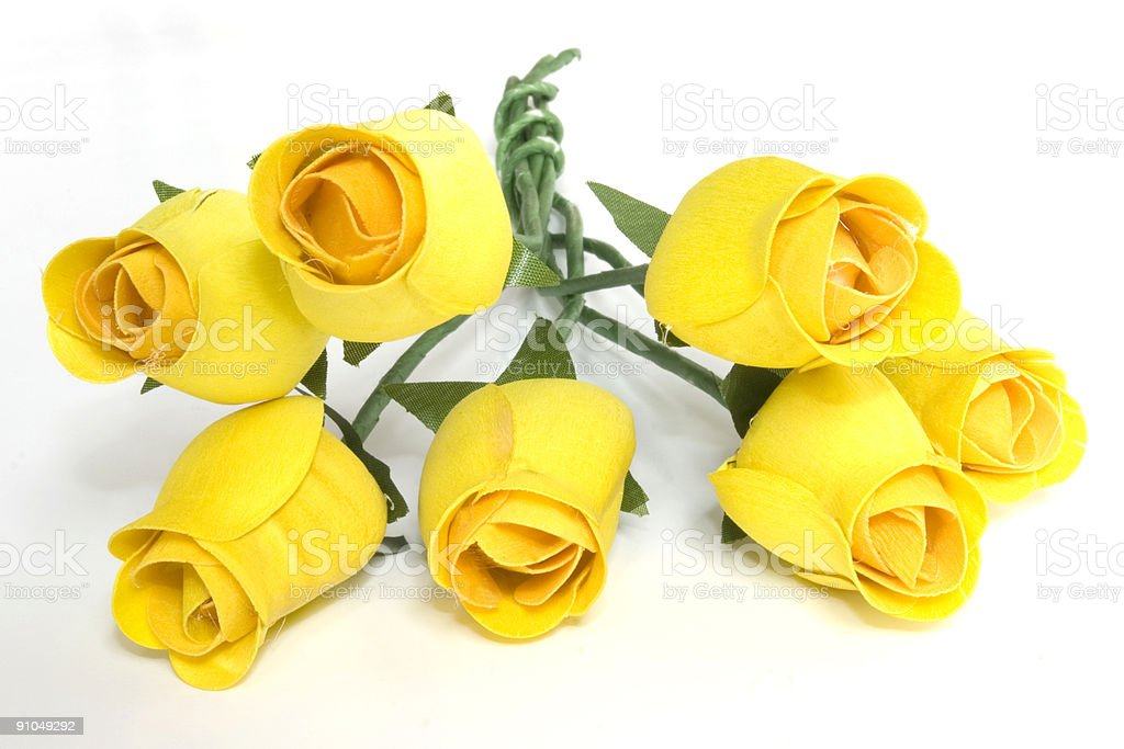 Yellow Roses Isolated on White royalty-free stock photo