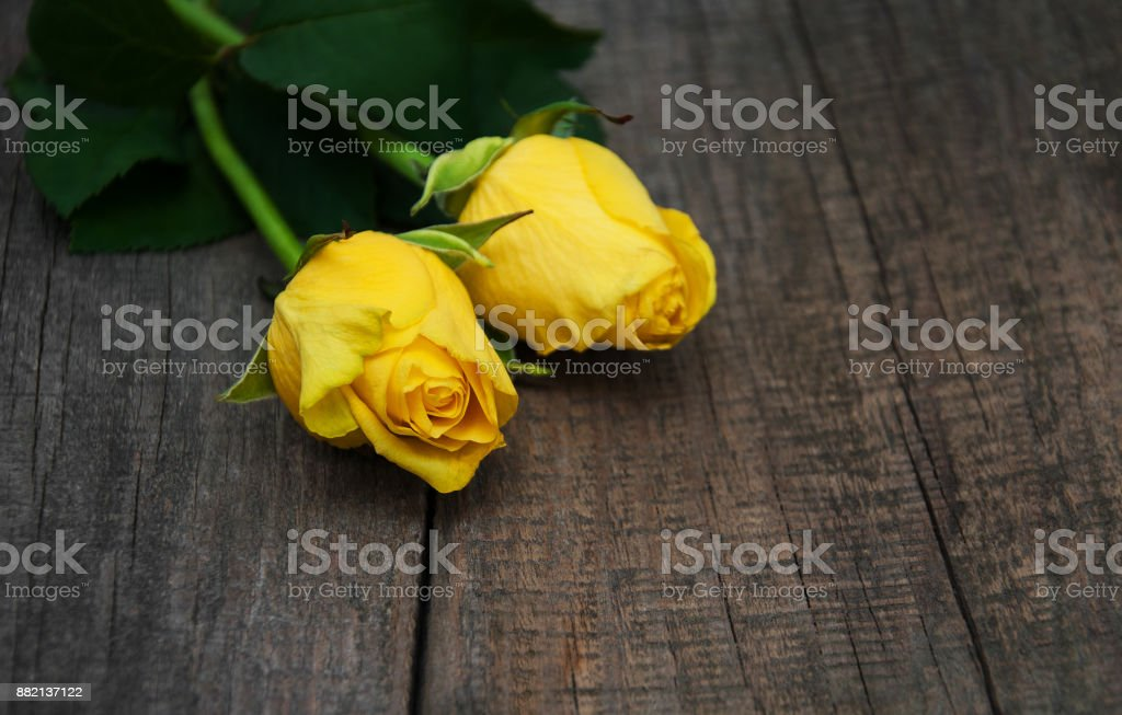 Yellow roses on a table stock photo