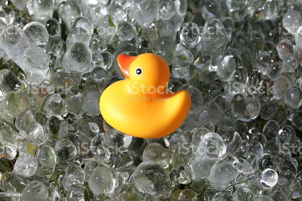 Yellow Rubber Duck Bath Toy on Ice Spheres A yellow rubber duck is on top of bubbles of ice in the shape of small spheres or marbles.  The yellow duck is facing slightly upwards and left in a profile.  It has the classic orange beak and black eye with a white ring, and an upturned tail.  The rubber duckie is a quintessential baby bath toy, in fact, very often a baby's first bath toy. Frozen Stock Photo