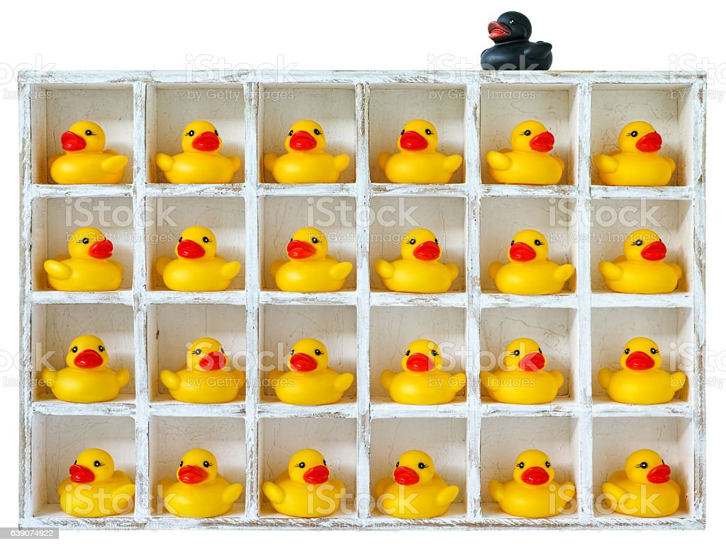 Yellow rubber ducks in pigeon holes, one black duck outside.. stock photo