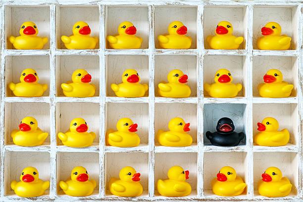 yellow rubber ducks in pigeon holes, one black duck. - kreativer speicher stock-fotos und bilder