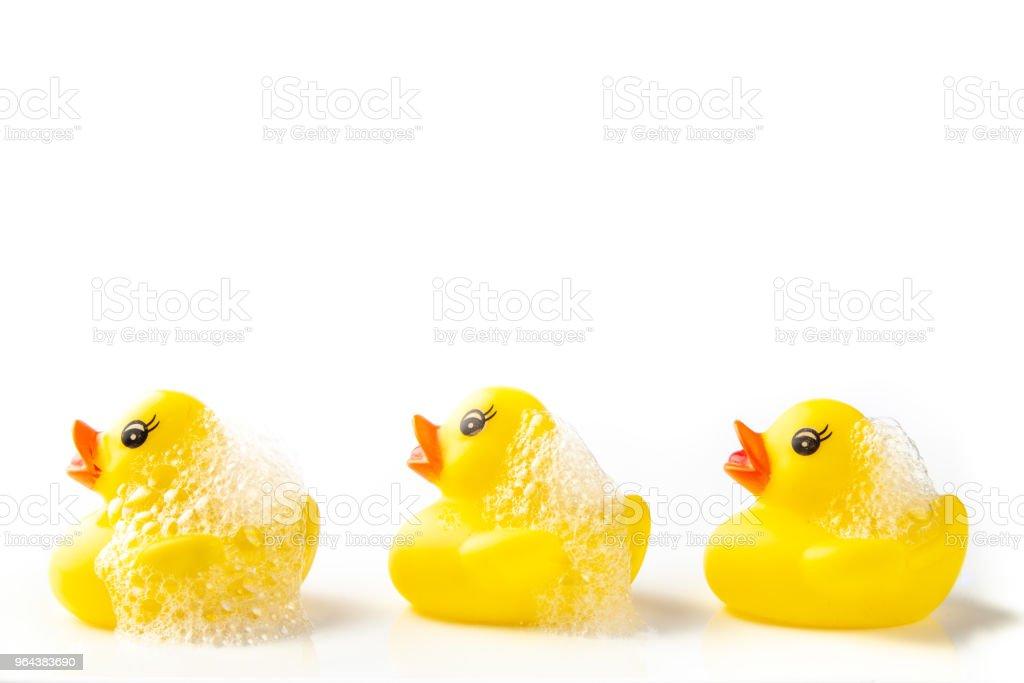 3 gele rubberen eenden met zeep suds op hun hoofd, zwemmen in een lijn op witte achtergrond - Royalty-free Bad Stockfoto