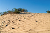 Yellow sand dunes with desert vegetation against a blue sky