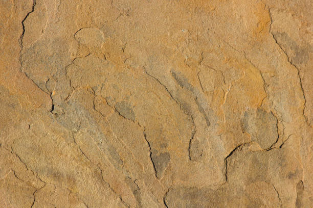 Surface de visage de grès jaune - Photo