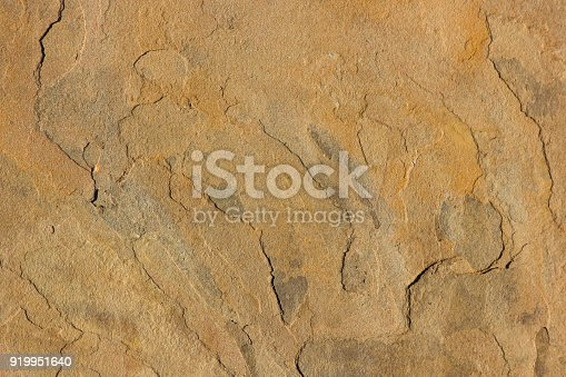 Yellow Sandstone face surface texture close-up, North West Province, South Africa