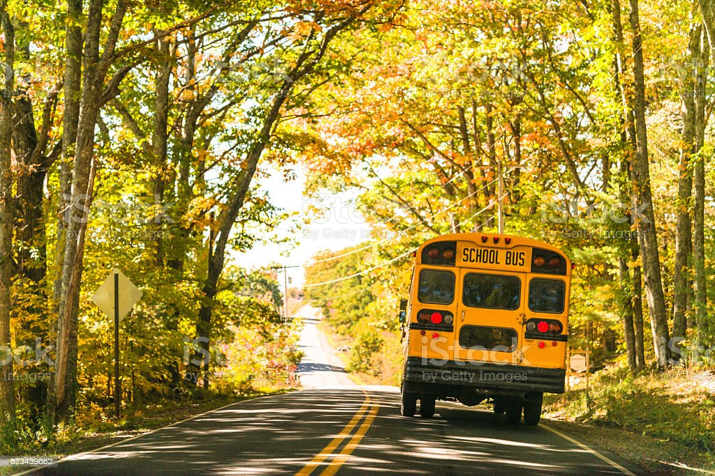 yellow school bus rear view on the road stock photo