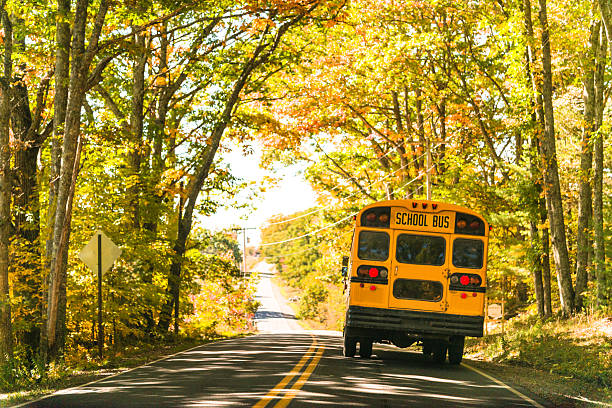 yellow school bus rear view on the road – Foto