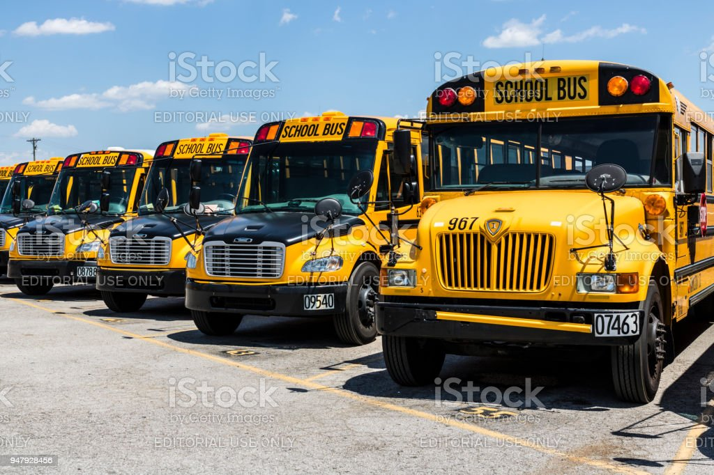 Yellow School Buses in a District Lot Waiting to Depart for Students II stock photo