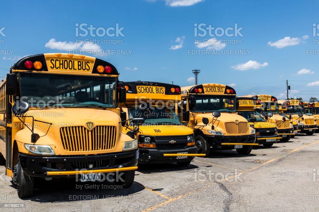 Yellow School Buses in a District Lot Waiting to Depart for Students III stock photo