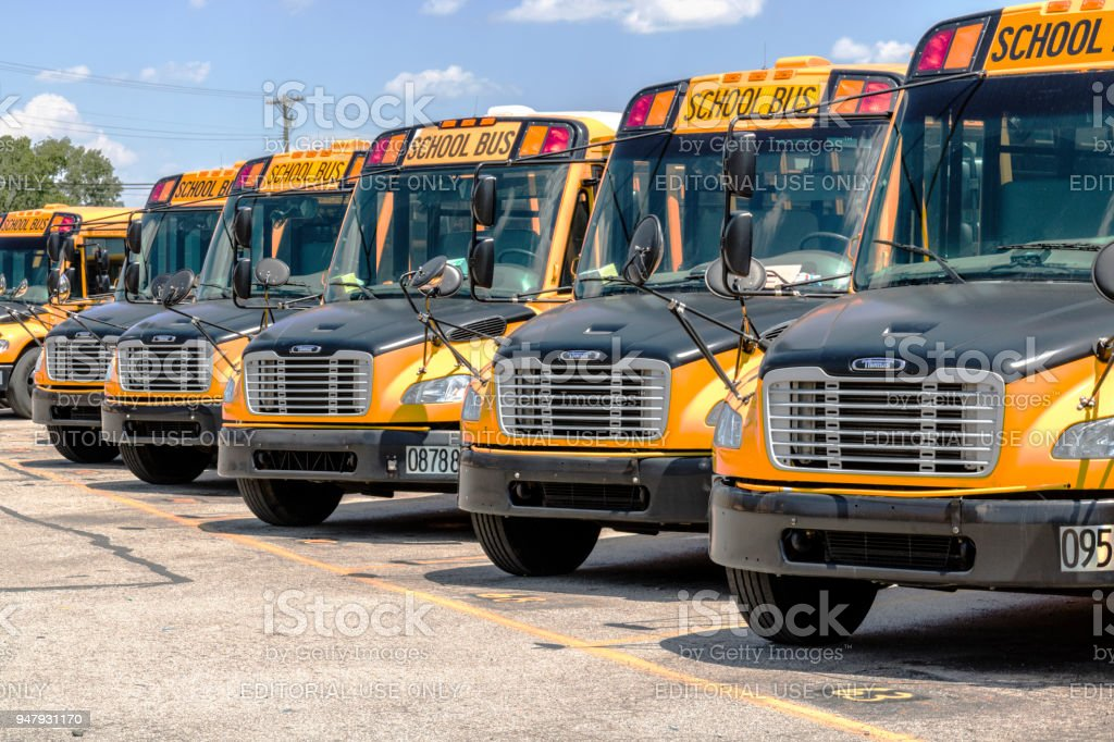 Yellow School Buses in a District Lot Waiting to Depart for Students I stock photo