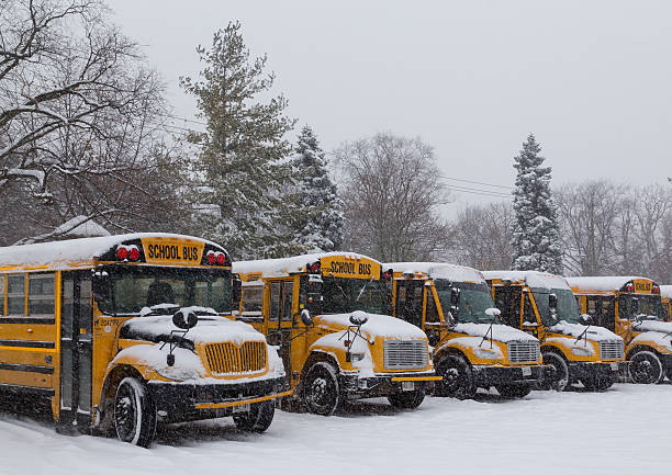 Yellow School Buses Parked in the Snow stock photo