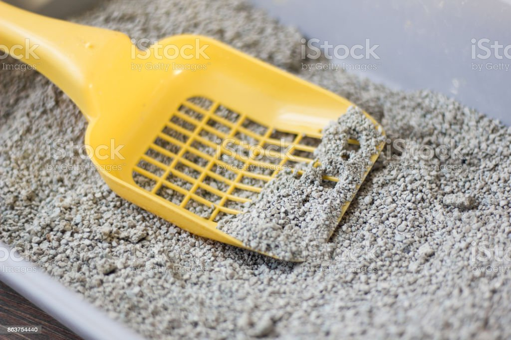 Yellow scoop on pets litter box filled by litter. stock photo