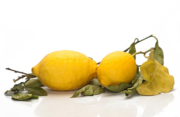 Limoni freschi gialli siciliana - foto stock