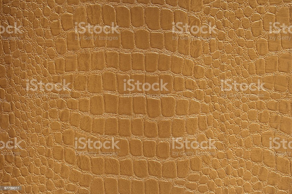 Yellow Snakeskin stock photo