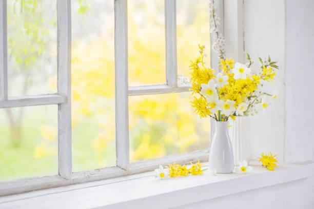 yellow spring flowers on windowsill stock photo
