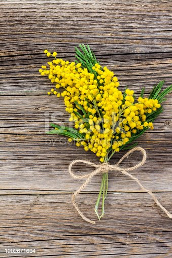 Yellow spring Mimosa bouquet with bow on a rustic wooden background with copyspace. Top view