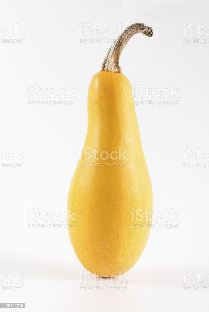 yellow squash pumpkin on white background stock photo