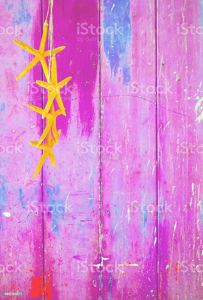 Estrela-do-mar em fundo Rosa Amarela - foto de acervo