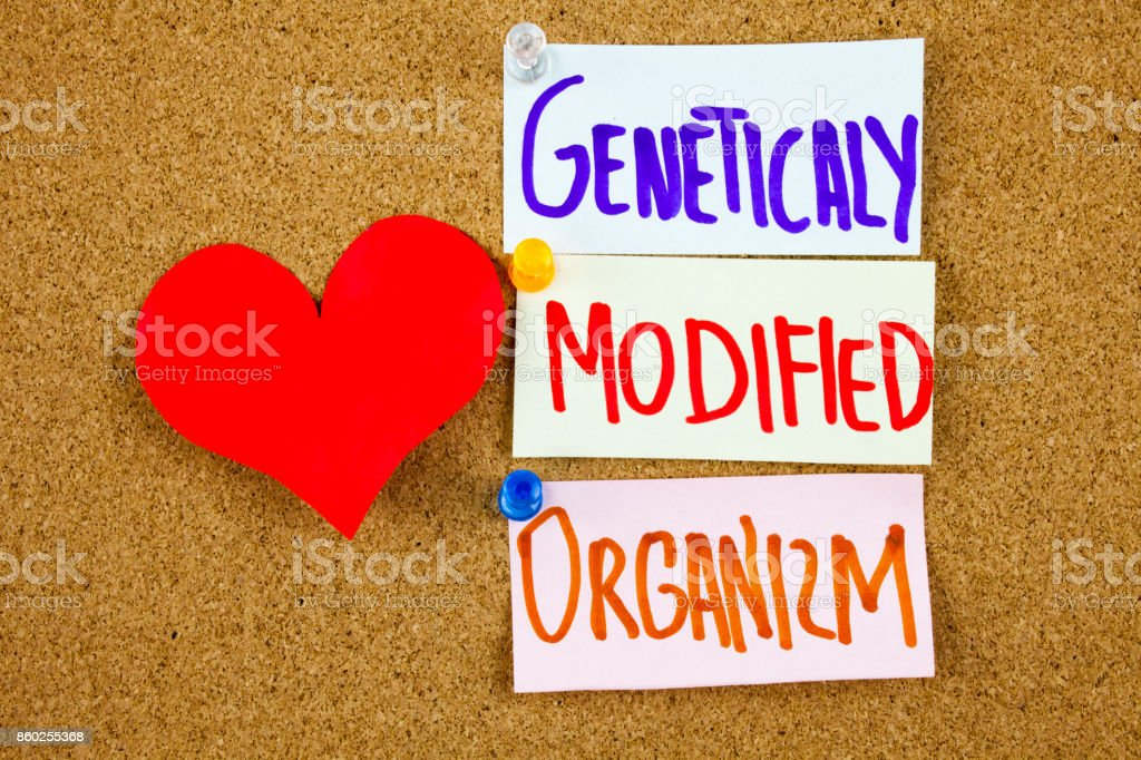 A yellow sticky note writing, caption, inscription GMO Genetically Modified Organism acronym on colorful sticky notes in black ext on a sticky note pinned to a cork notice board stock photo
