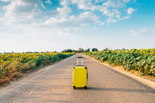 yellow suitcase on a road with sunflowers