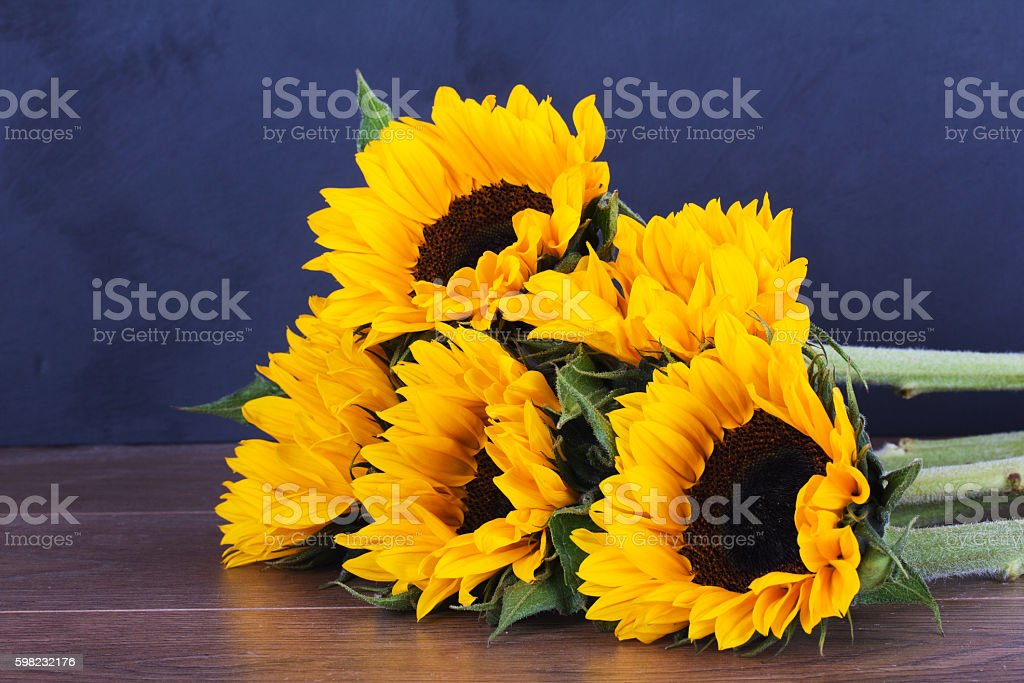 Yellow sunflower on against a rustic background foto royalty-free