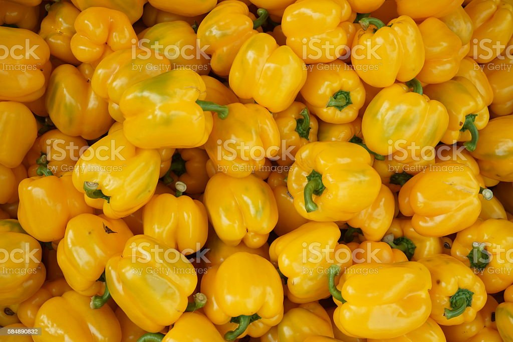 yellow sweet pepper stock photo