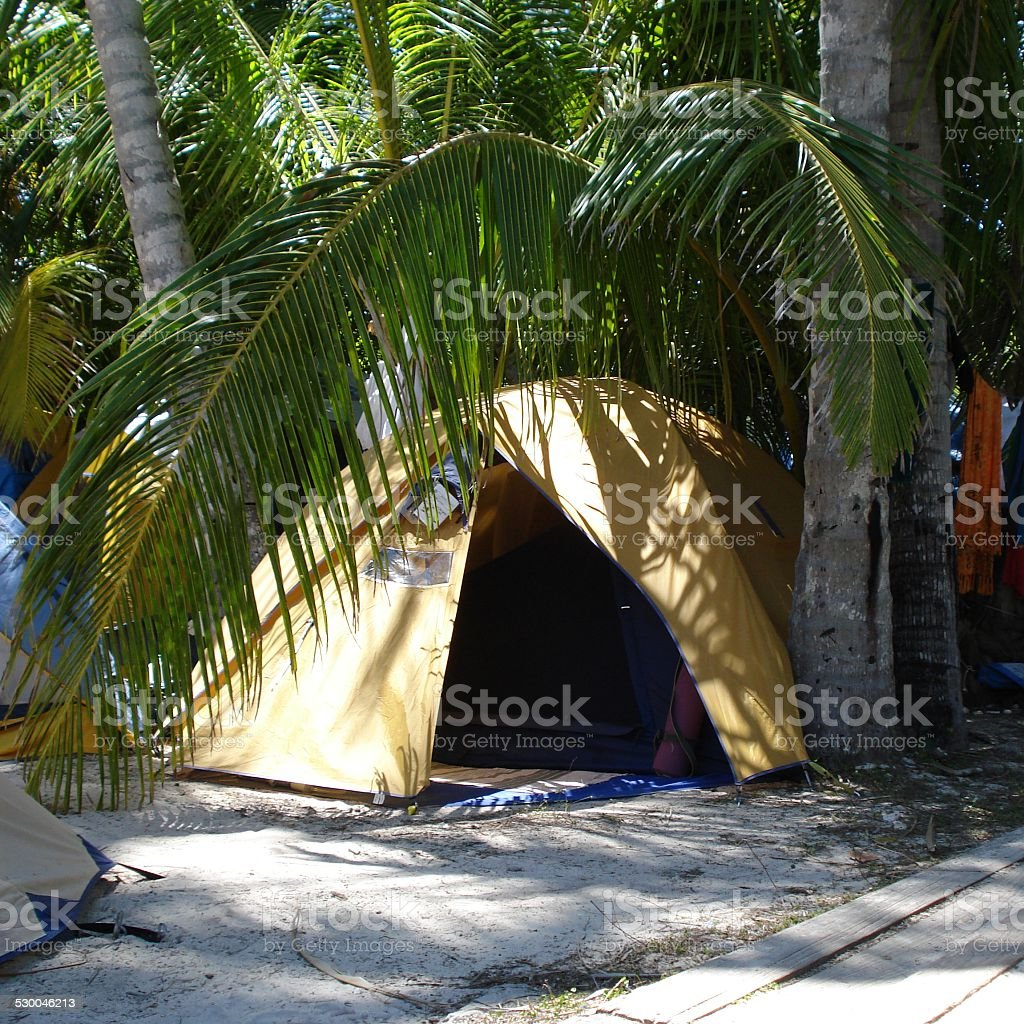 Yellow Tent Nestled under Palm Trees stock photo