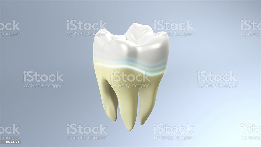 yellow to white tooth royalty-free stock photo