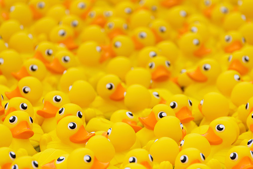 istock yellow toy duck 882092116